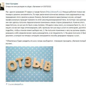 Одна консультация по ведения бизнеса в сфере ремонта ккомпьютеров, проект alexzsoft.ru, Олег Буторин